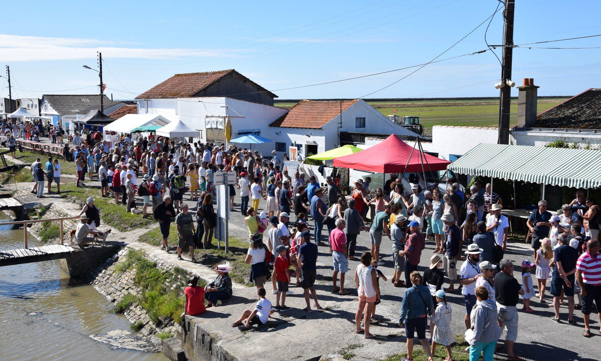 festival-les-insolites-bouin-vendee